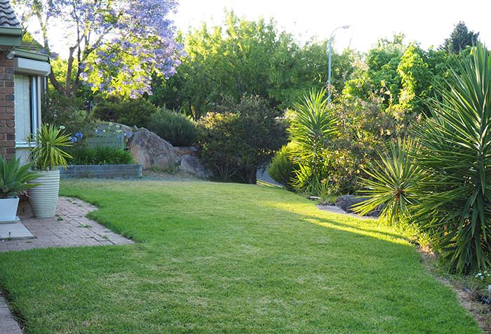 Munns-Review-Front-Lawn-Before
