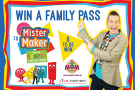 Mister-Maker-Family-Pass
