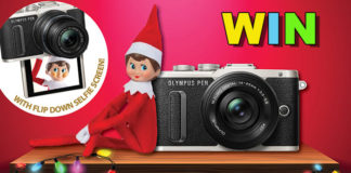 olympus-elf-on-the-shelf