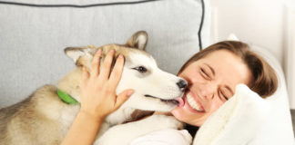 Dog licking a happy woman in whit shirt on the lips on the couch.