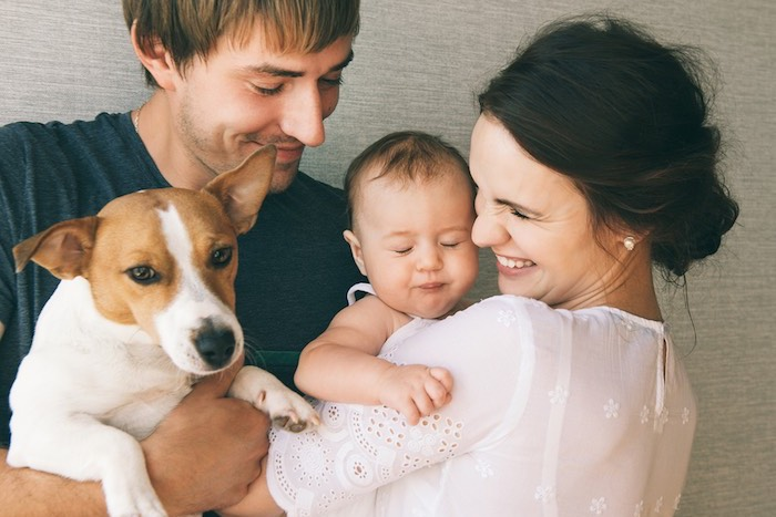 Introducing Your Pets to your Newborn