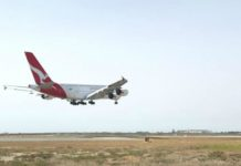 Mum Gives Birth Aboard Qantas Flight