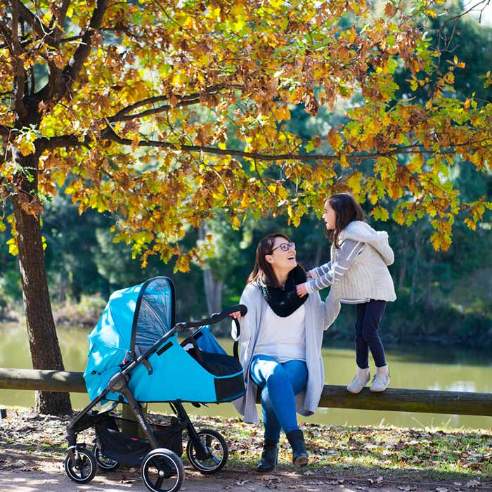 phil-&-teds-smart-buggy-autumn-leaves
