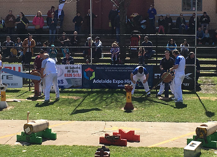 royal-adelaide-show-wood-chopping