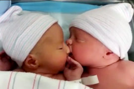 newborn twin viral video