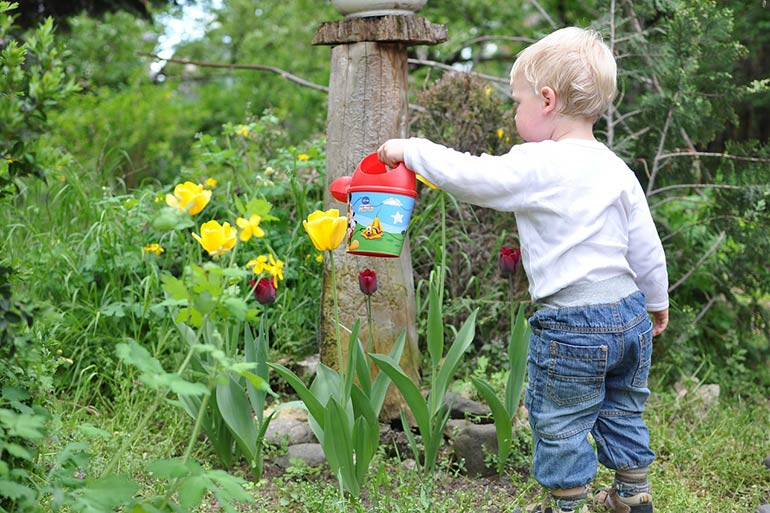 gardening is an easy chore toddlers can do
