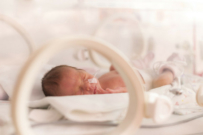Hope For Premature Babies Thanks to New Public Health Program