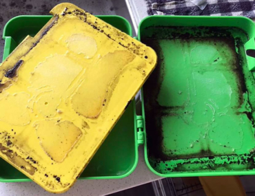 lunch box mould warning