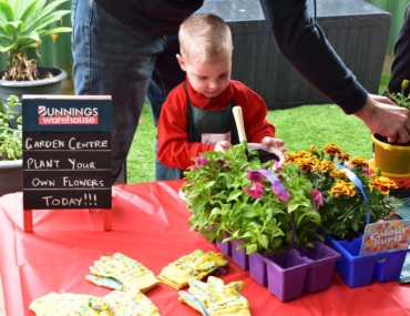 Bunnings birthday party