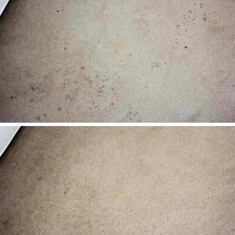 Britex treatment on carpet stains
