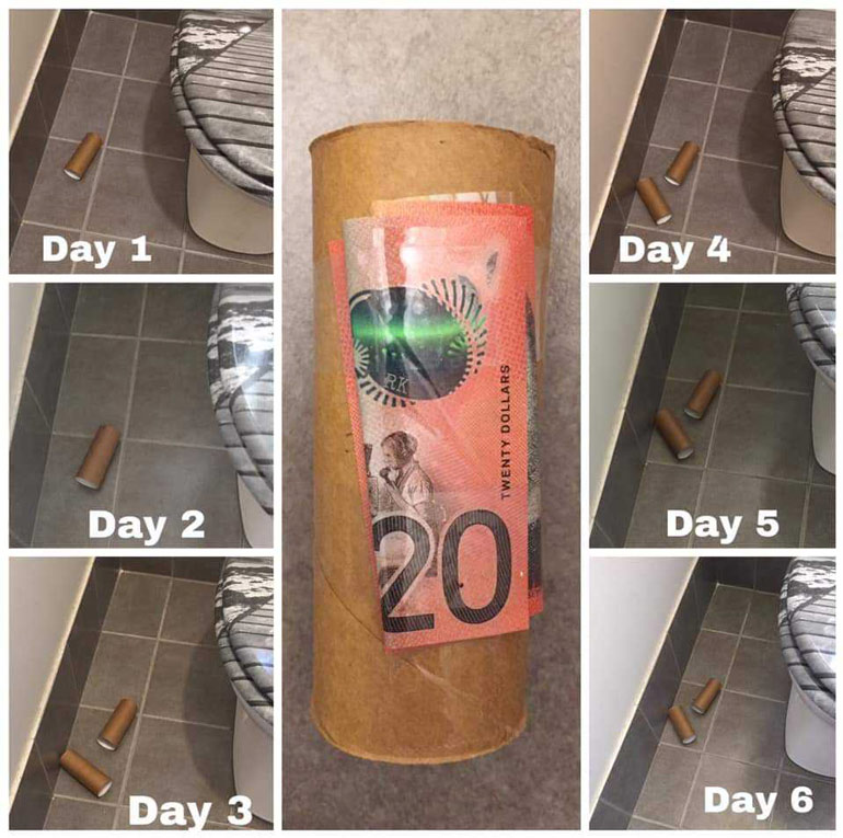 cleaning hack toilet paper roll