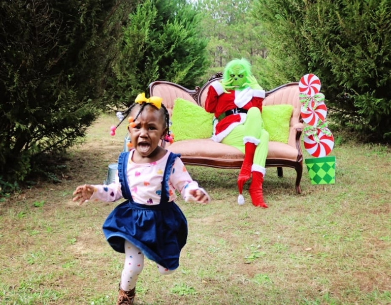 grinch photoshoot goes wrong