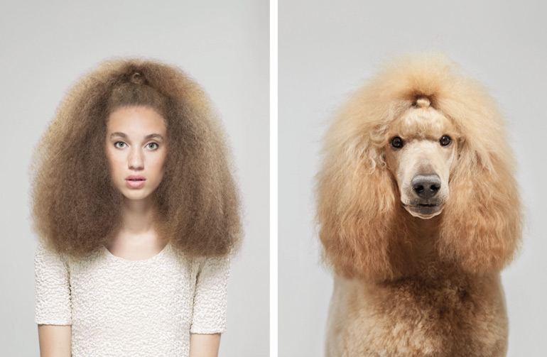 dogs look like owners