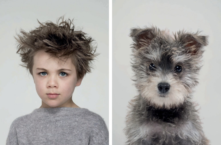 dogs look like humans