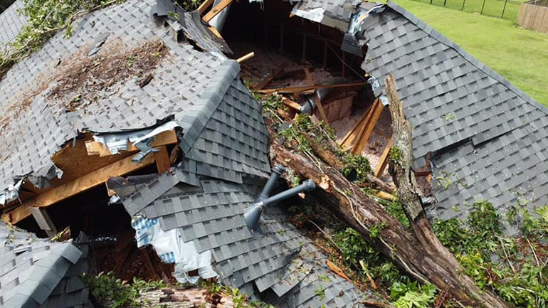 damage to roof from fallen tree
